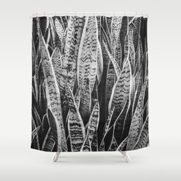 Plant Photography Tropical Exotic Plants Snake Plant Tongue Beauty Wild Nature Black and White Shower Curtain
