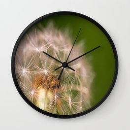 Snowglobe - Macro Photograph of Dandelion Wall Clock