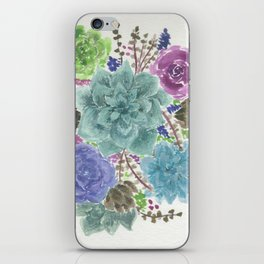 Colorful Succulents iPhone Skin