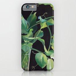 Sweetpea 2 iPhone Case