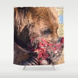 Hungry Alaskan Grizzly Bear - Eating Raw Meat Shower Curtain