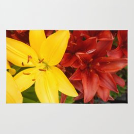 """""""A Gathering of Lilies"""" - 3 [D4468~49] Rug"""