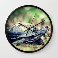 Slowpoke Wall Clock