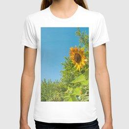 Cloud gazing Sunflower T-shirt