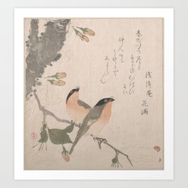 Bullfinches and Cherry Blossoms Art Print