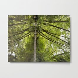 Reflection in the Forest Metal Print