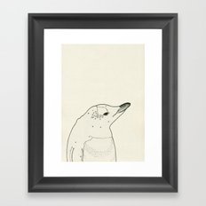 Gentoo Penguin Framed Art Print