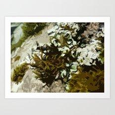 Abstract macro moss plants Art Print