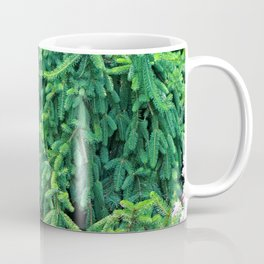 Norway Spruce III Coffee Mug