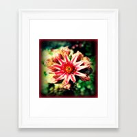 succulent Framed Art Prints featuring Succulent by Eve Penman