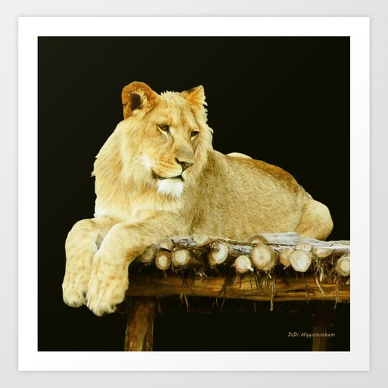 Too Young To Be King Art Print