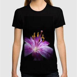 Beauty in the Night T-shirt