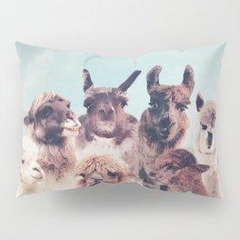 ALPACA ALPACA ALPACA - NEVER STOP EXPLORING Pillow Sham