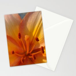 Orange Lily Closeup Stationery Cards