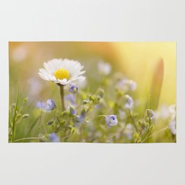 Daisy and court- Daisies Flowers Flower Meadow Spring Rug