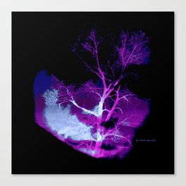 A Tree to See Canvas Print