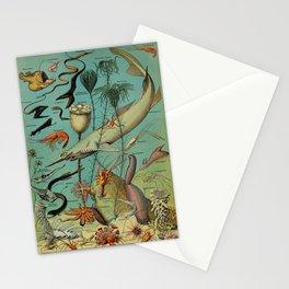 Strange Unique Ocean Animals Vintage Scientific Illustration French Language Encyclopedia Lithograph Stationery Cards