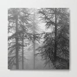 Wandering.... Mono Metal Print