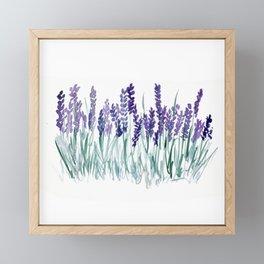 Larkspurs Framed Mini Art Print