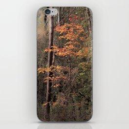 Autumn impression iPhone Skin