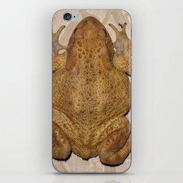 Overhead Anatomy Of a Bufo Bufo Toad iPhone Skin