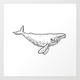Humpback Whale Drawing Side Art Print