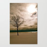narnia Canvas Prints featuring Narnia by Meghan Kane