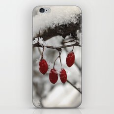 Finding Red iPhone & iPod Skin