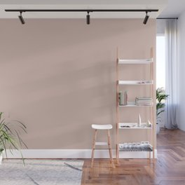 Dunn and Edwards 2019 Curated Colors Travelling Tan (Pale Pastel Pink) DE6080 Solid Color Wall Mural