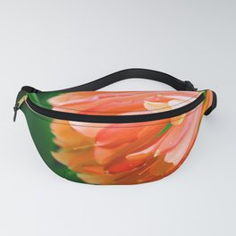 Trumpets Blare Fanny Pack