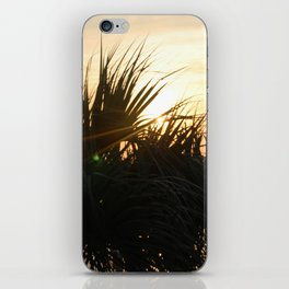 Low Country Sunset iPhone Skin