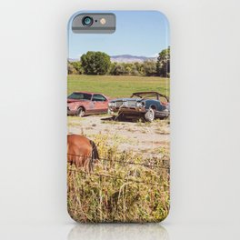 So Many Horses // Beautiful Wildhorses and Three Rusty Cars iPhone Case