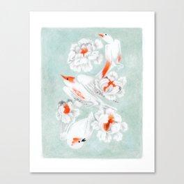 3 oiseaux Canvas Print
