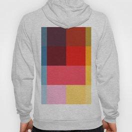 Chromatic squares Hoody