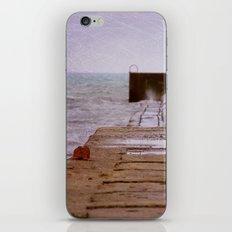 Lake Winds iPhone & iPod Skin