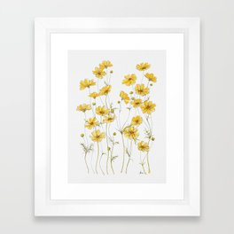 Yellow Cosmos Flowers Framed Art Print