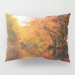 glory Pillow Sham
