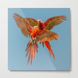 INFLIGHT FIGHT Metal Print