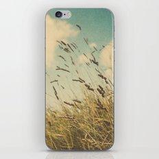 Autumn in Tuscany 02 iPhone & iPod Skin