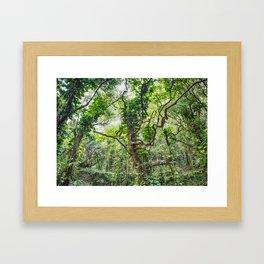 Jungle Vines Framed Art Print