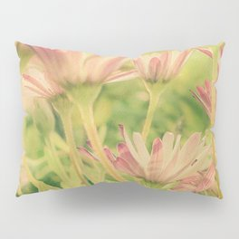 Vintage Spring Coral Pink Daisy Flowers Pillow Sham