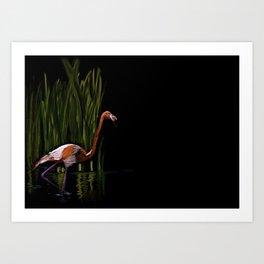 59 - Kerala flamingo Art Print