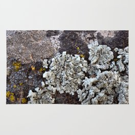 Smattering of Lichens Rug