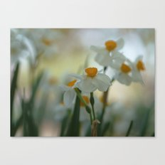 Morning Dream Canvas Print