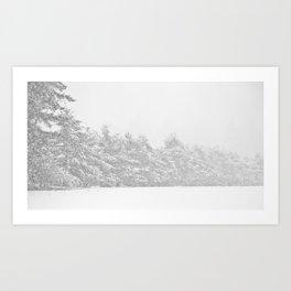 Snow Haze Art Print