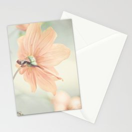 Noonday Dreams Stationery Cards