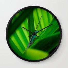 Blue-throated Anole, Grand Cayman Wall Clock