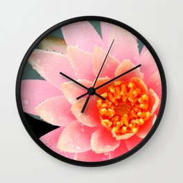 A Water Lily's Prime Wall Clock