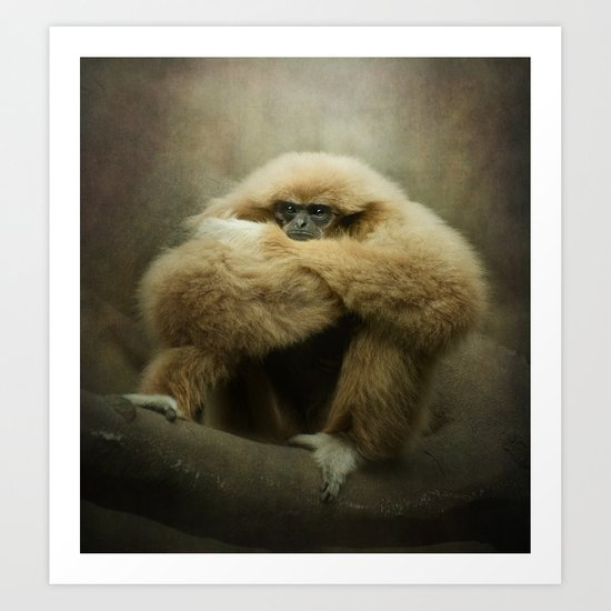 Study of a Gibbon - The Thinker Art Print