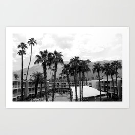 Palm Tree Noir #26 Art Print